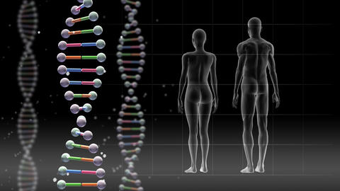 DNA 2 B A1c Animation