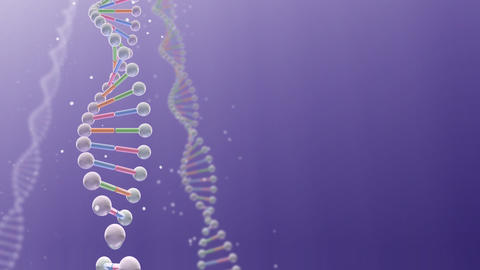 DNA 2 B A2 Animation