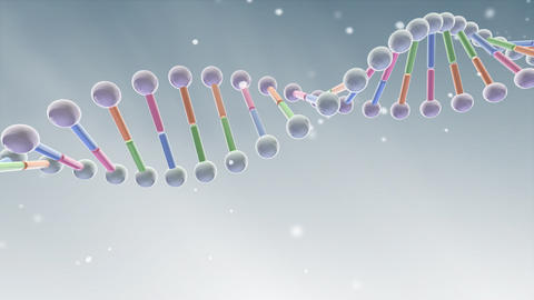 DNA 2 B A5 Animation