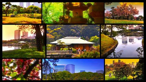 Japanese Garden Splitscreen 02 Stock Video Footage