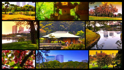 Japanese Garden Splitscreen 02 Stock Video Footage
