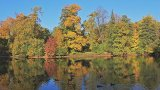 Reflection Of Autumn stock footage