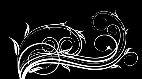 beautiful animated black and white patterns for mo Stock Video Footage