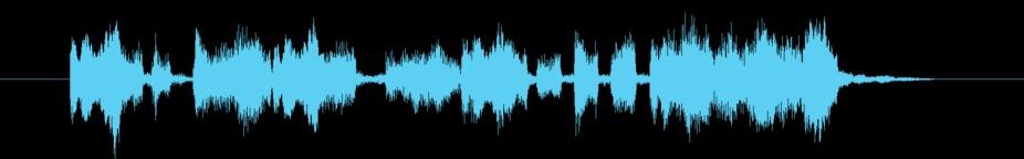 Organ Sting E stock footage