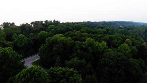 Aerial View Of Green Forest Treetops From Above In stock footage