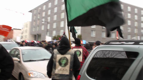 Anarcho Panda walks and protests in large crowd Footage