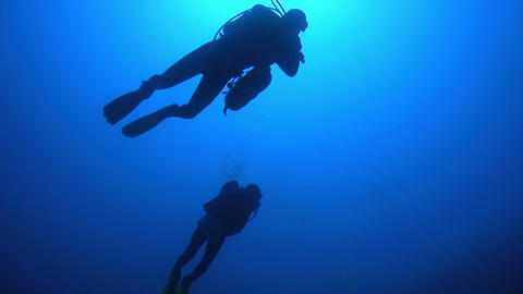 Diver Swim over Coral Reefs Footage