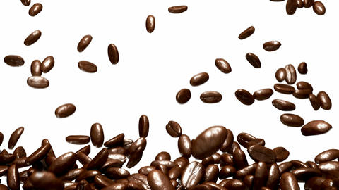 Coffee beans falling down with slow motion over white Stock Video Footage