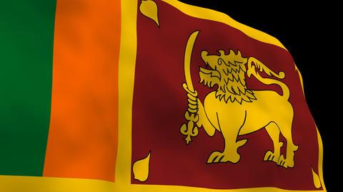 National Flag B65b SRI Sri Lanka Stock Video Footage