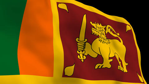 National Flag B65b SRI Sri Lanka Stock Video Footage
