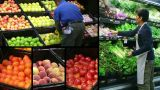 Produce Market Composite stock footage