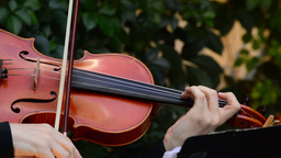 Playing Viola stock footage