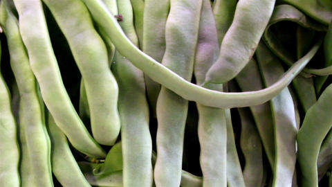 Lots of the ecological green beans Footage
