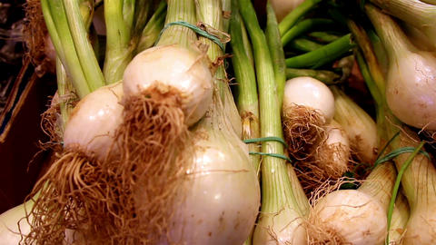 Well cropped eco spring onions Footage