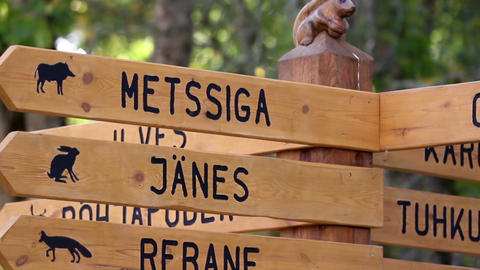 Wooden sign post where there is directions Footage
