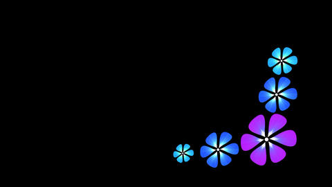 Animated colorful florals growing ライブ動画
