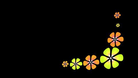 Animated florals ライブ動画