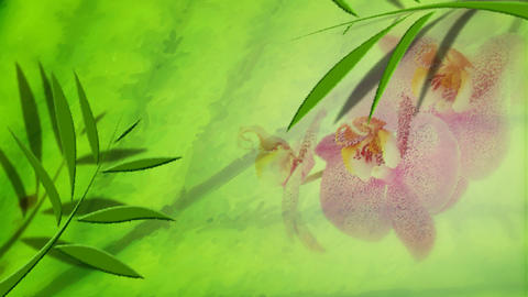 Animated florals in an abstract oil painting Footage