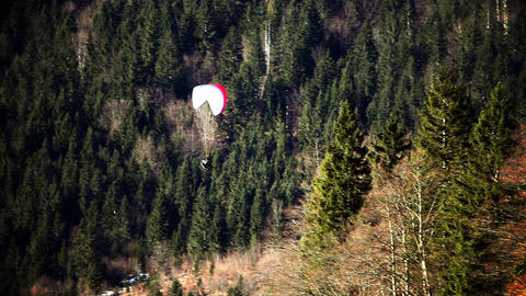 parachuter flying above forest Footage