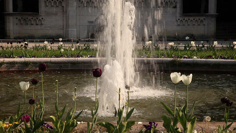 nice fountain sourrounded with flowers Live Action