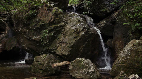 Shot of the water stream in the wood Live Action