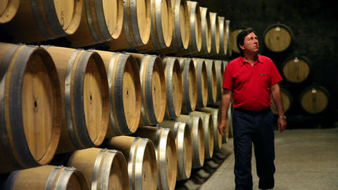 the man checking the barrels in the wine cellar Live Action