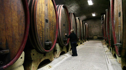 a women checking the barrels in the wine cellar Live Action