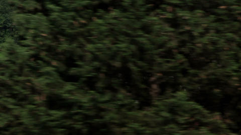 The Landscape From The Moving Train stock footage