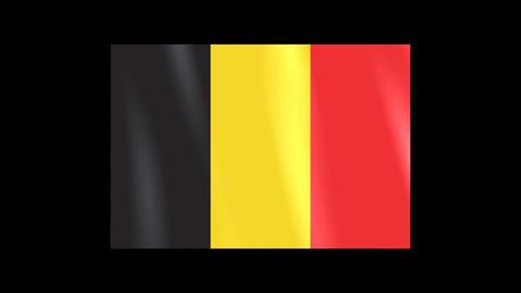 National Flags 4 BEL Belgium Stock Video Footage