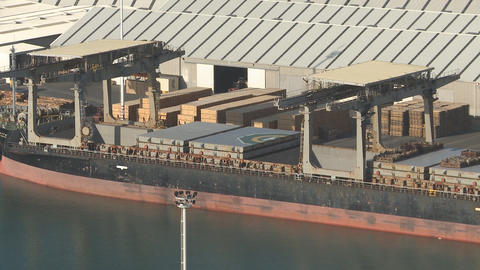 Time lapse of timber laoded on a ship Stock Video Footage