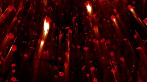 Rose Petals 02 Stock Video Footage