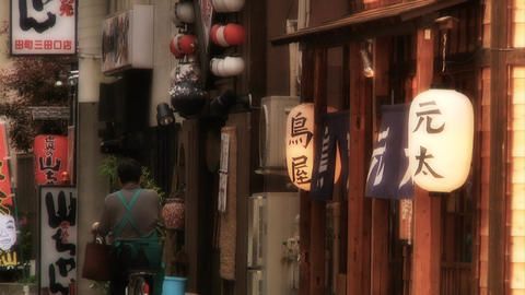 scenes of japan Stock Video Footage