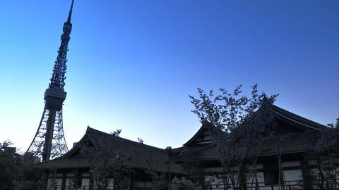 tokyo tower Footage