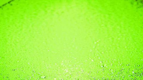 Loopable appearing water droplets (time lapse). Over lettuce green background Animation