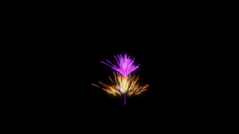 Magic bright Fireworks over black. You can find other... Stock Video Footage
