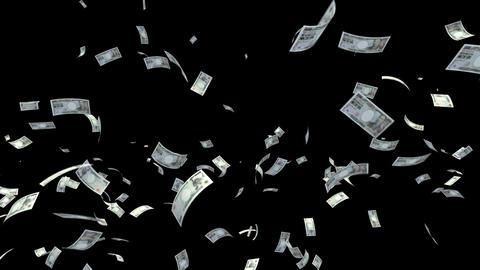 Money Yen L am with alpha Stock Video Footage
