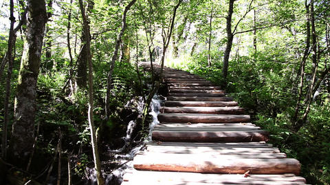 wooden path in the park Plitvice Footage