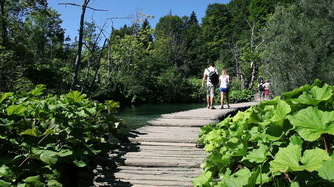 tourists walking on a path through a park Footage