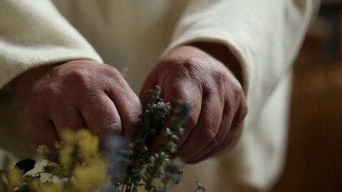 Close up of an old man picking dried herbs Live Action