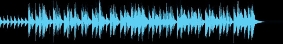 Chasing Rabbits Chipbeat 15 Music