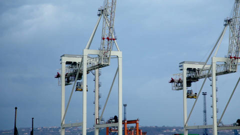 Shot Of A Harbor With Dock Cranes stock footage