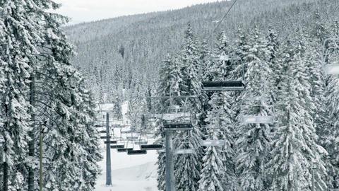 Idyllic ski slope, cableway between spruce tree fo Footage