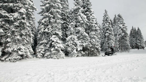 People enjoying while skiing in idyllic winter tim Footage