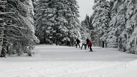 Group of people skiing in idyllic winter surroundi Footage