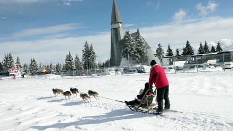 Sledge with huskies in the idyllic winter time Footage