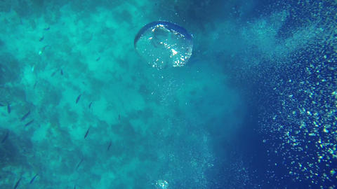 Air bubbles coming from below the sea level Footage