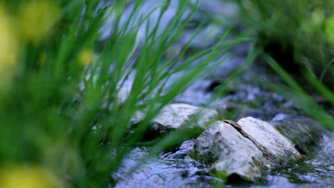 Low angle close up shot water stream in spring Footage