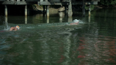 Swimmers going under a bridge in lake Footage
