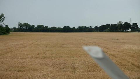 Driving through big wheat on farm Footage