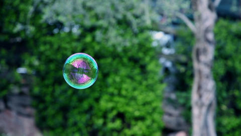 Flying soap bubble on green lawn Footage